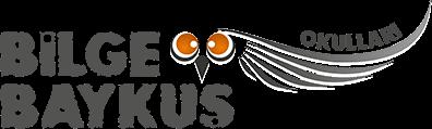 Bilge Baykuş - Web Tasarım - Web Yazılım - freelance